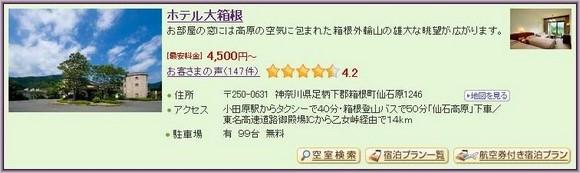 3-Hotel Daihakone_1