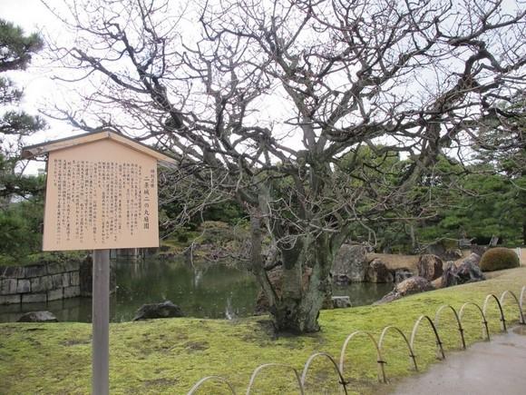 2012年京阪之旅Day 2_Pic12