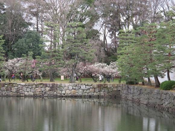 2012年京阪之旅Day 2_Pic21