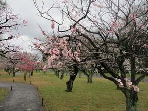 2012年京阪之旅Day 2_Pic25