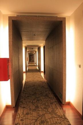 Park Regis Hotel Singapore_環境3