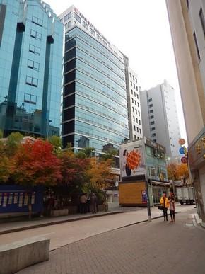 Hotel Skypark Central Myeongdong Seoul_外觀_04