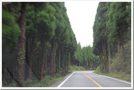 2011年秋日本北九州自駕遊 - Day 4_44