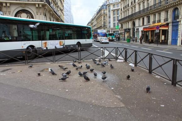 2012年巴黎、倫敦雙城之旅 – Day 2_10