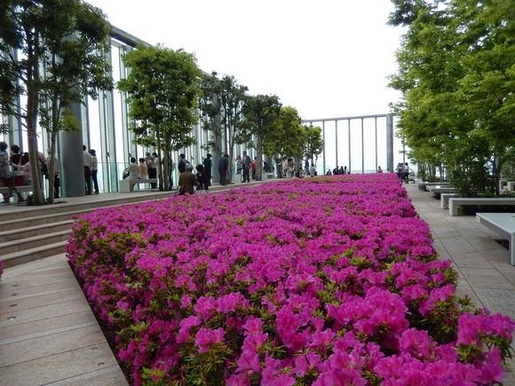 2014年環瀨戶內海自駕遊_Day7_43