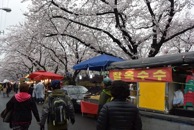 2015 Seoul Busan Trip Day4_113