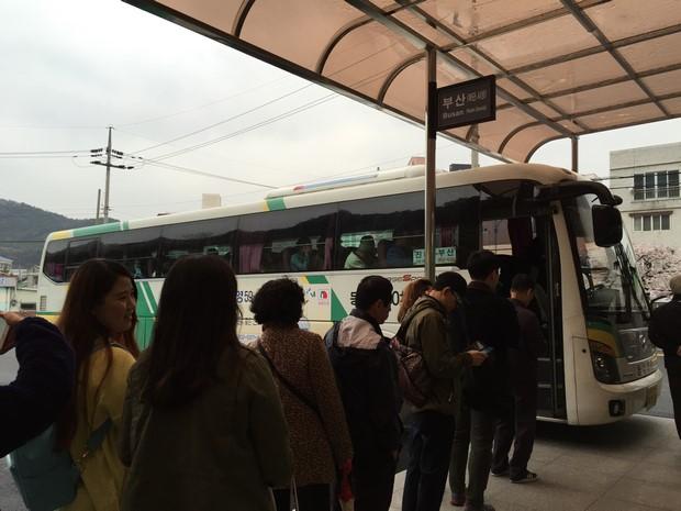2015 Seoul Busan Trip Day4_143