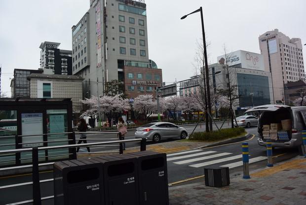 2015 Seoul Busan Trip Day4_16