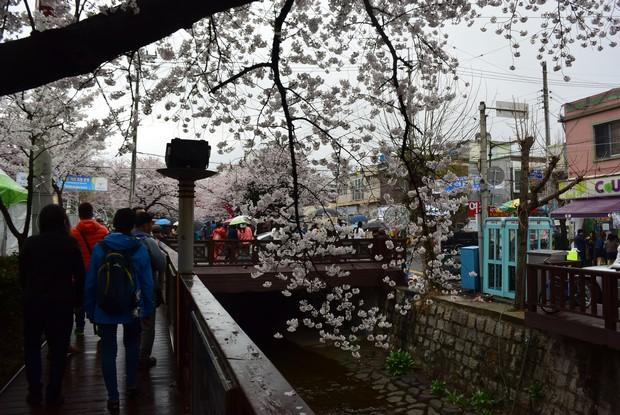 2015 Seoul Busan Trip Day4_91