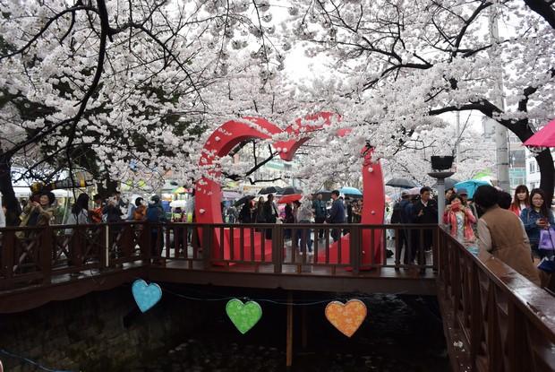 2015 Seoul Busan Trip Day4_96