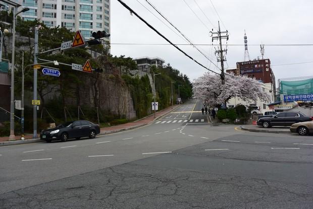 2015 Seoul Busan Trip Day5_48