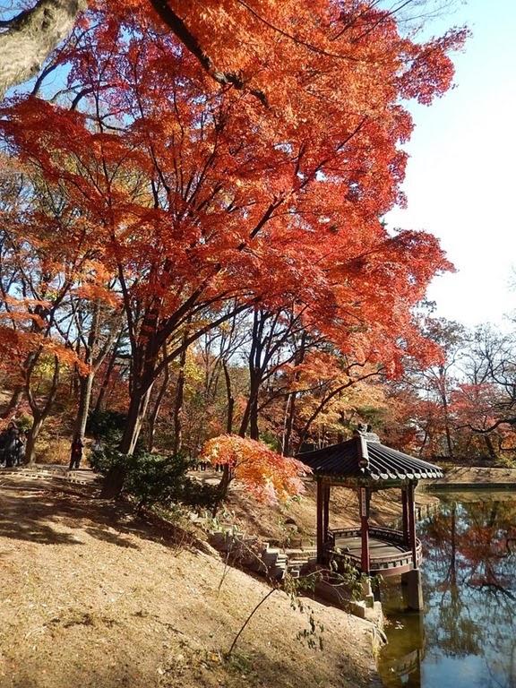 Changdeokgung Secret Garden_12
