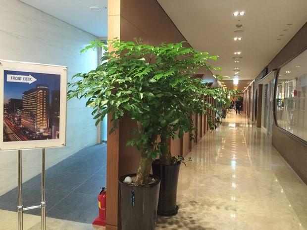Loisir Hotel Seoul Myeongdong_11