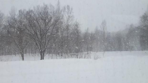2014 Hokkaido Winter Trip_Day3_14