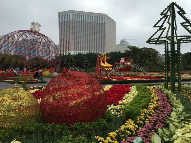 Macao Christmas Flower Show_24