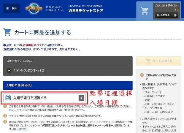 Puchase Ticket in USJ Website_08