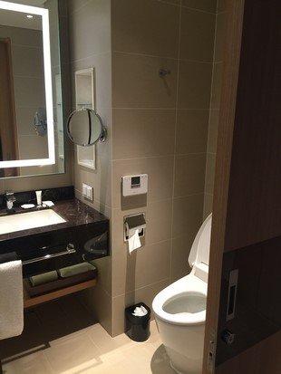 Lotte City Hotel Jeju_Room_18