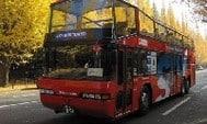 東京Sky Hop Bus開蓬觀光巴士